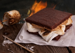 30405_chocolate_graham_cracker_s'mores